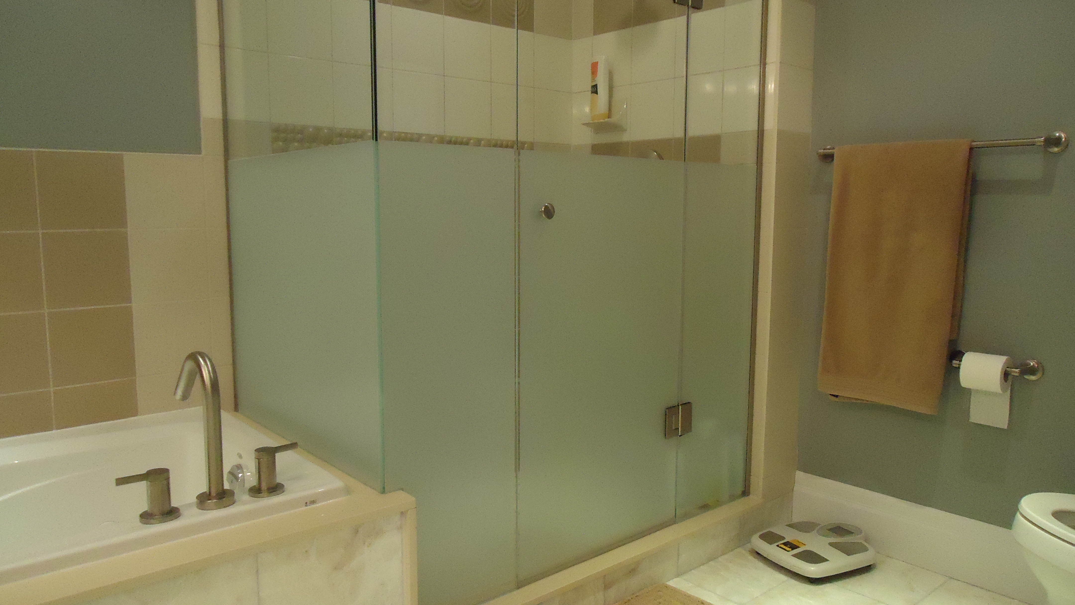 Adding privacy to a glass shower small space style for Glass shower doors for baths